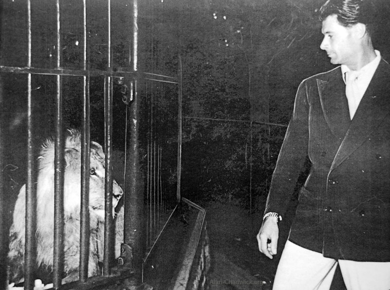 Alan Chadwick in Theatrical Role with Lion