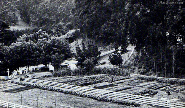 The original Alan Chadwick gardens at Green Gulch Farm