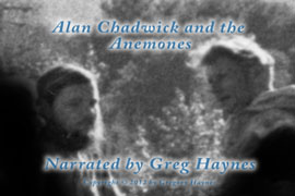 Alan Chadwick and the Anemones