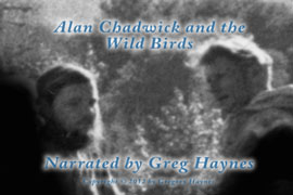 Alan Chadwick and the Wild Birds